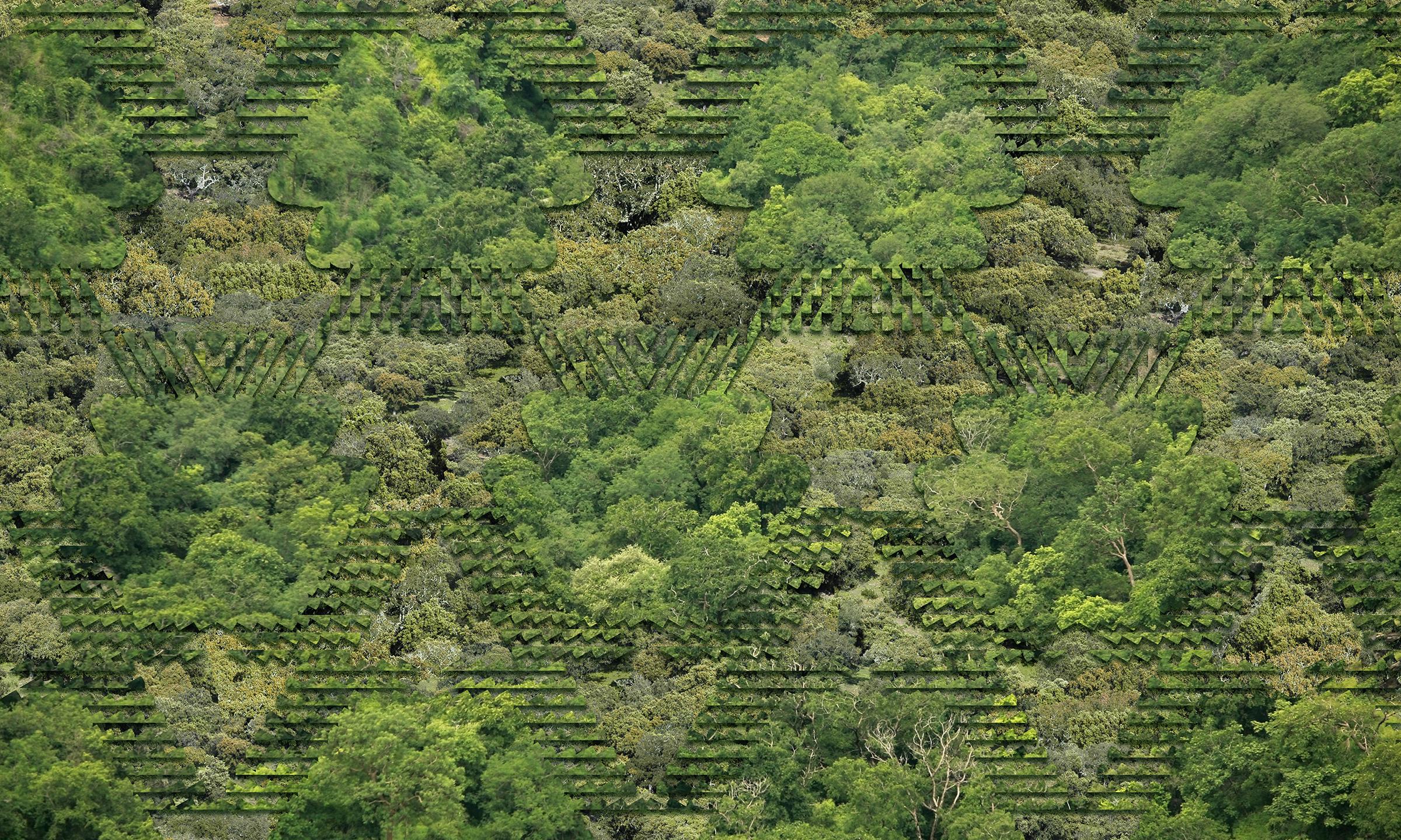 02 080718 02f landscape SM